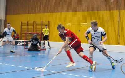 Studenten-Sportart Floorball  möchte in Heilbronn heimisch werden