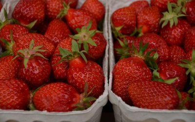 Fruktose –  unterschätze nicht die Erdbeere